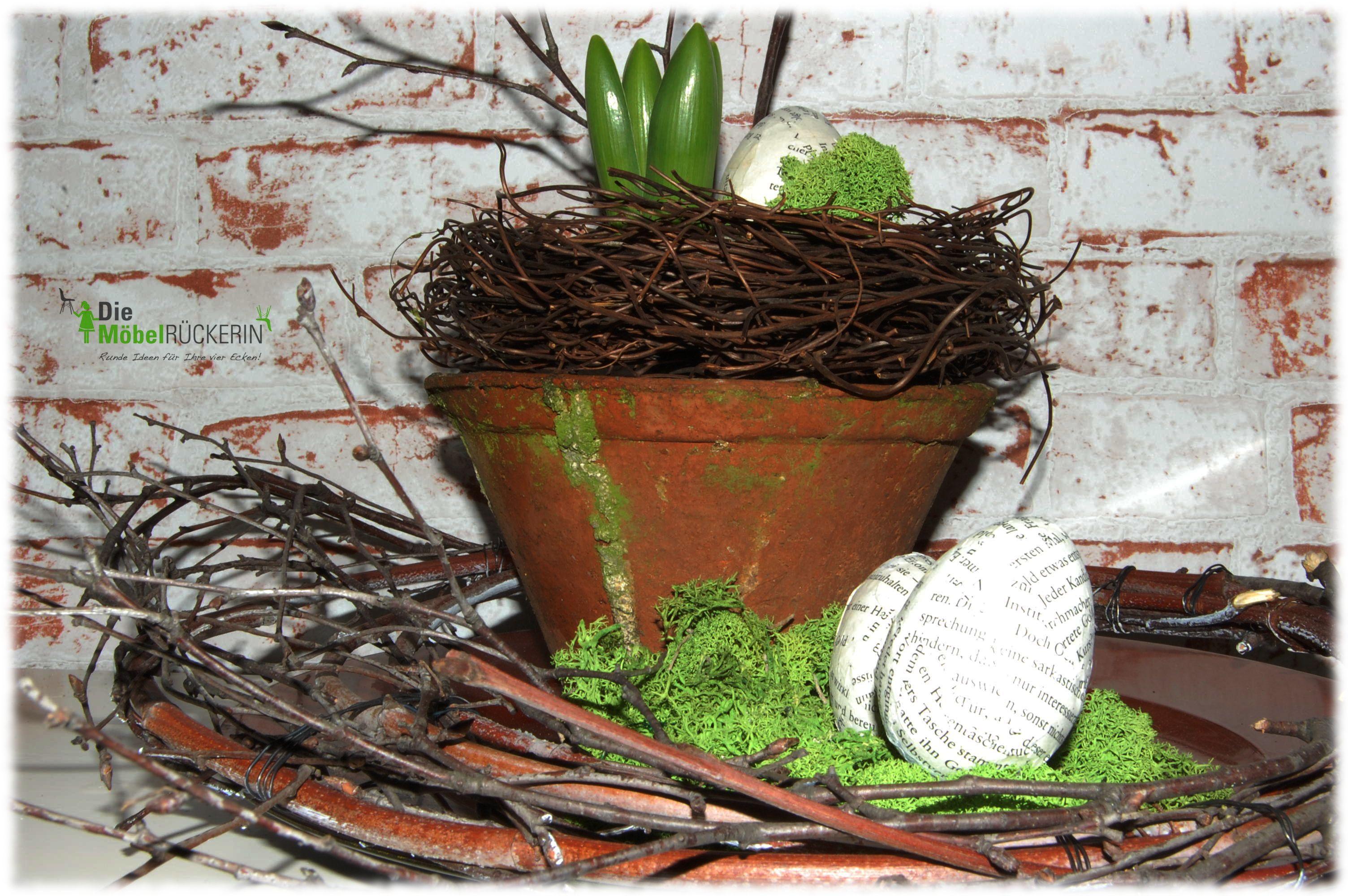 Der Frühling steckt den Kopf raus. Hyazinthe mit (Lesel)Ei.