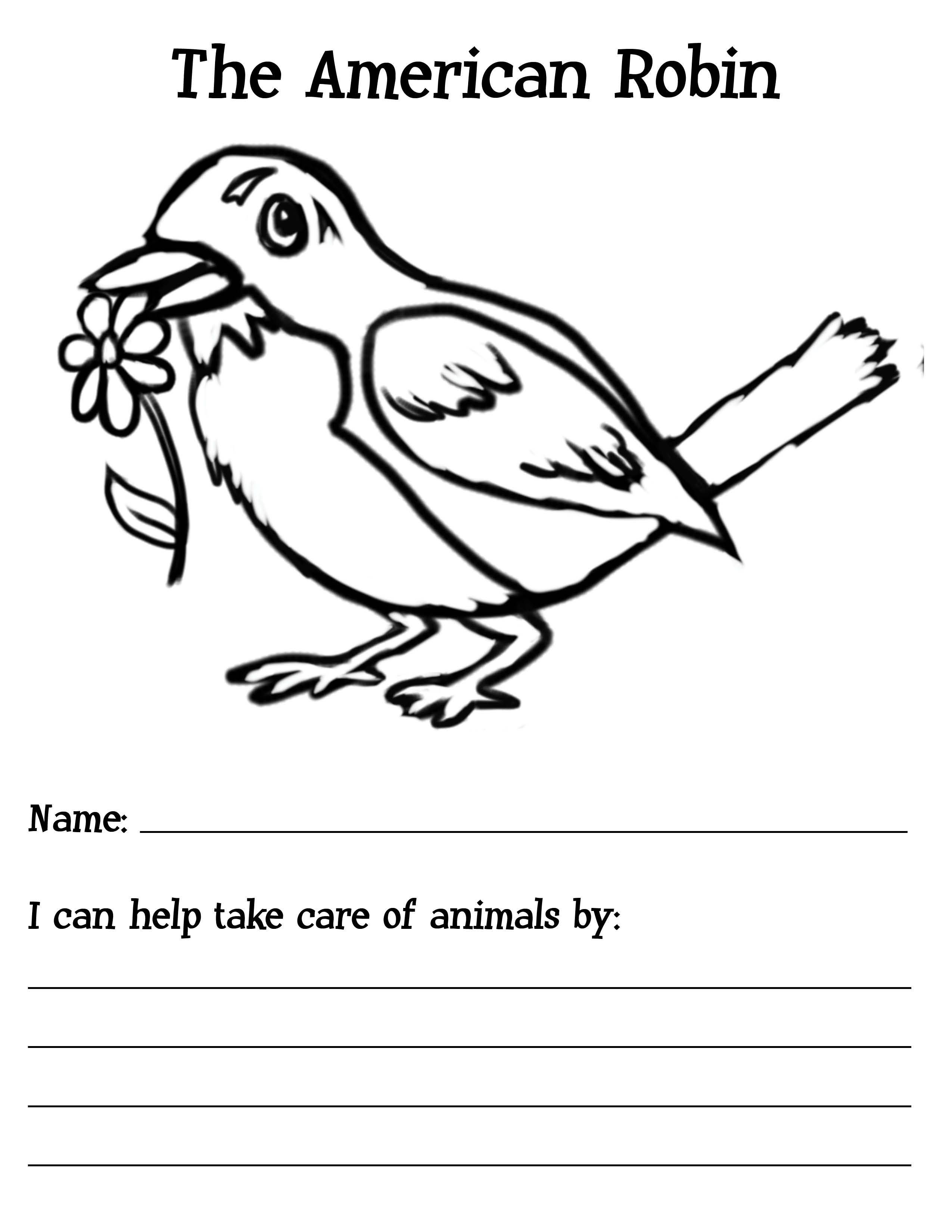 Daisy Journey 3 Cheers For Animals Robin Coloring Sheet