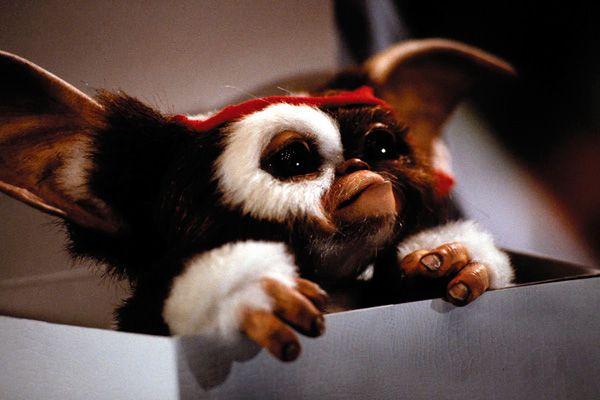 Gizmo Nombre completo: Gizmo Lo vimos en: Gremlins (1984), Gremlins 2(1990).