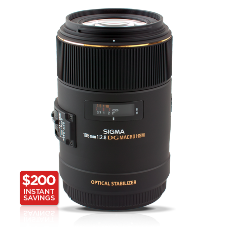 105mm F2 8 Ex Dg Os Hsm Macro Nikon Macro Lens Nikon Dslr Camera Macro Lens
