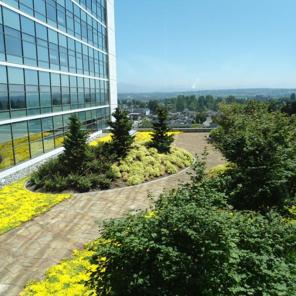 Adding topography to your vegetated roof can have a