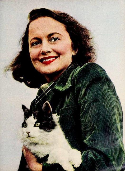 Olivia De Havilland Celebrities With Cats Cats Olivia De Havilland