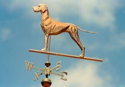 SWEN Products GREAT DANE DOG Steel Weathervane