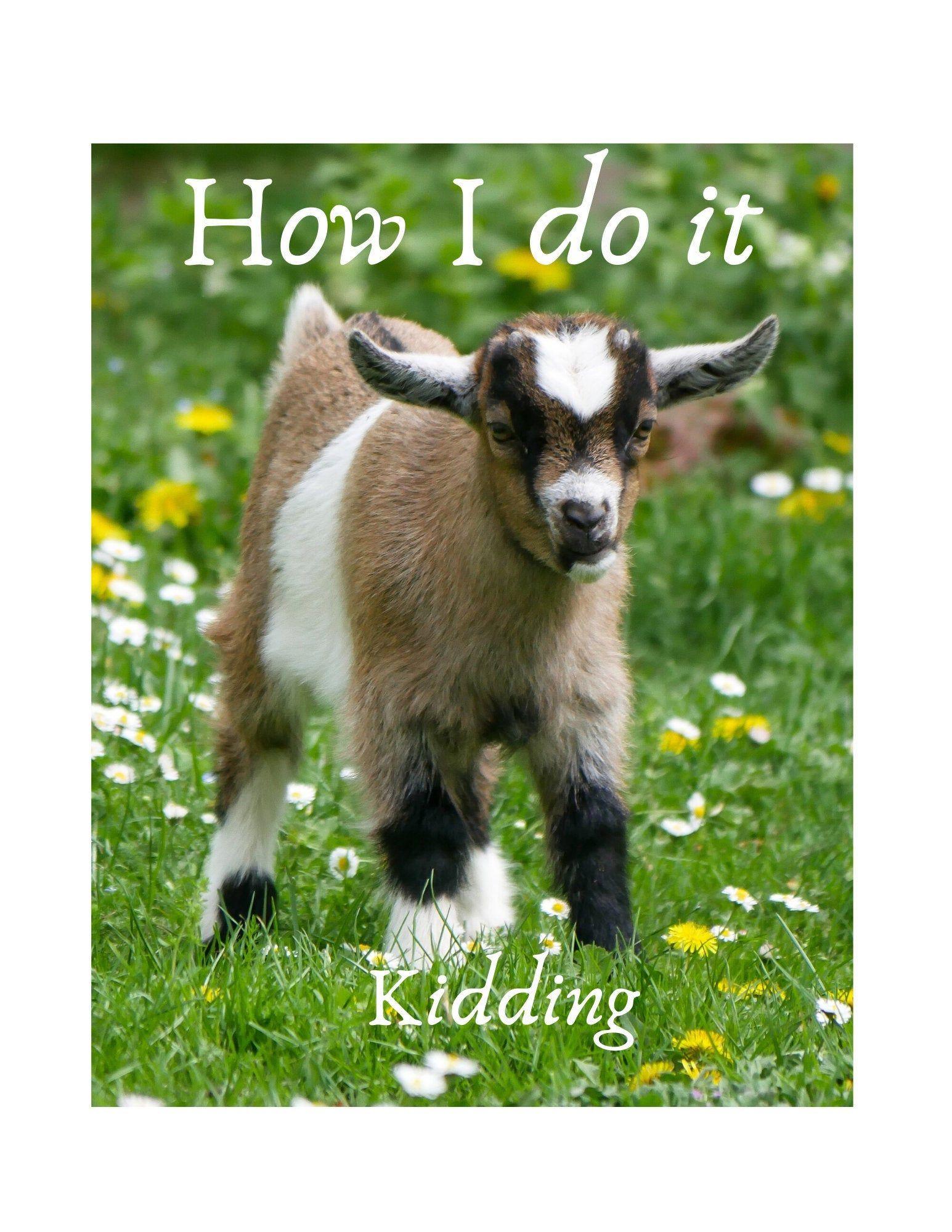 Goat Kidding eBook Digital Download Etsy in 2020 Goats