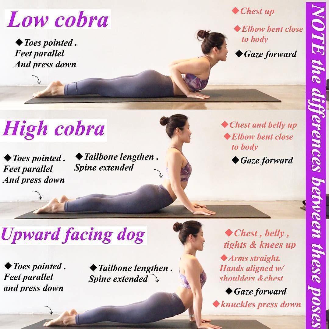 Upward Dog Vs Cobra