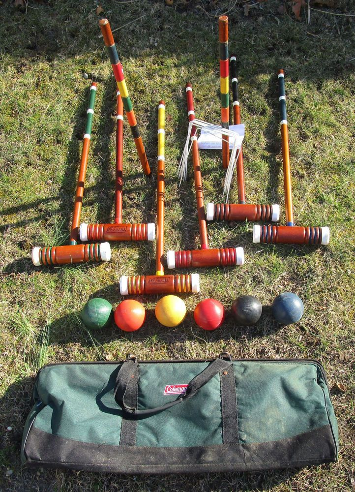 Game played with balls mallets and wickets - CodyCross ...