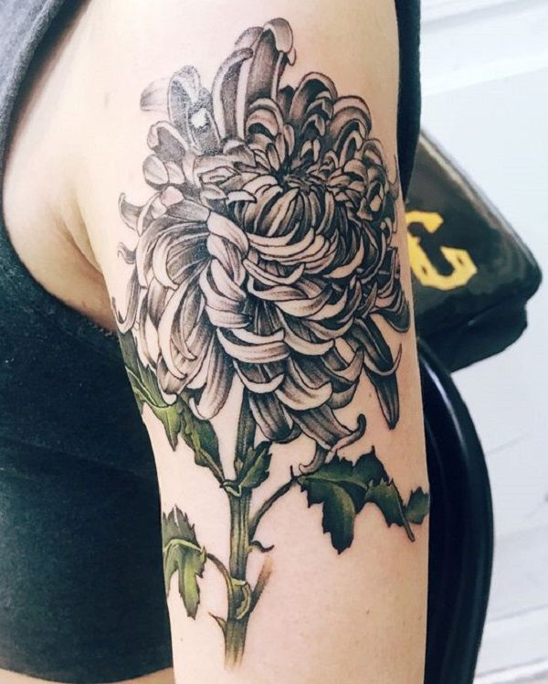 91fb31312 The Detailed Chrysanthemum Tattoo. The stunning details involved in this  tattoo are quite remarkable. The pop of green color is surely adding to its  grace.