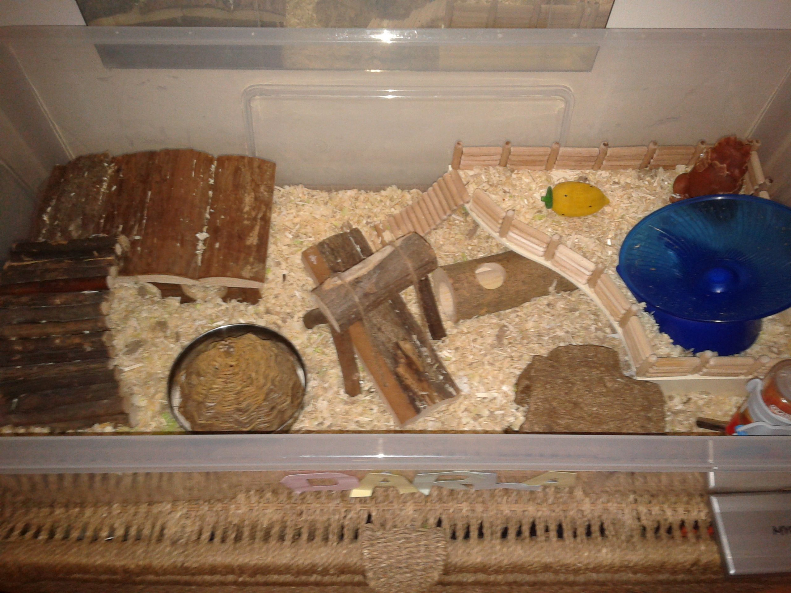 Hamster Cage Layout Cool Hamster Cages Hamster Cages Hamster