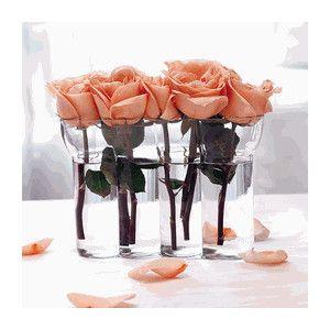 Peach Wedding Ideas   Google Search