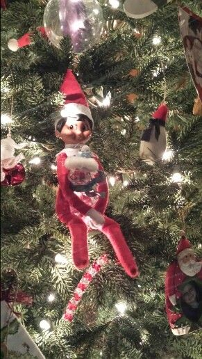 We found Stormy on the tree with Coles favorite ornament.  #elfonashelf
