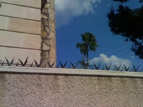 Cadillos Picos De Acero Para Barda Seguridad Perimetral- Mdn