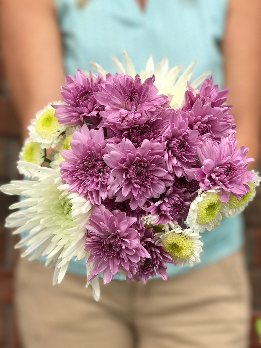 Summer flowers like daisies and poms add color and smiles to anyones summer flowers like daisies and poms add color and smiles to anyones day purple mixed izmirmasajfo