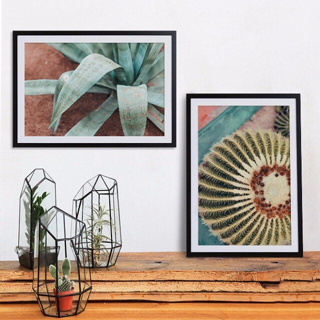 Feelin' the botanical vibes Link in Bio  #juniqe #art #cactus #wallart