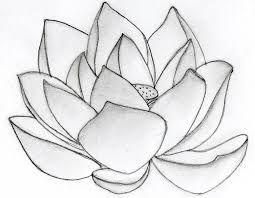 Resultado De Imagem Para Simple Lotus Drawing ภาพวาดง ายๆ ภาพวาด ดอกไม