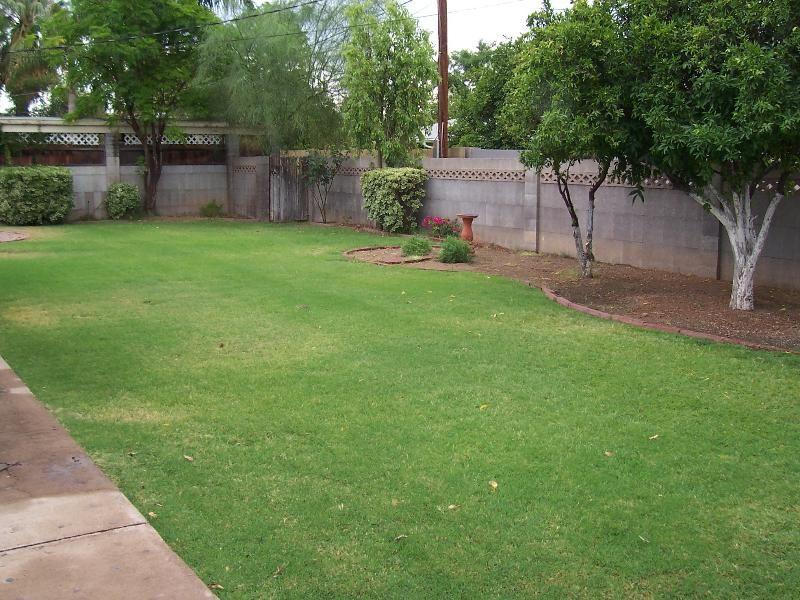 Rectangular Backyard Landscaping Ideas ... on Rectangular Backyard Design id=29532