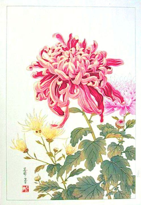Chrysanthemum No Date Hodo Takemura Flower Art Chrysanthemum Painting Japanese Art