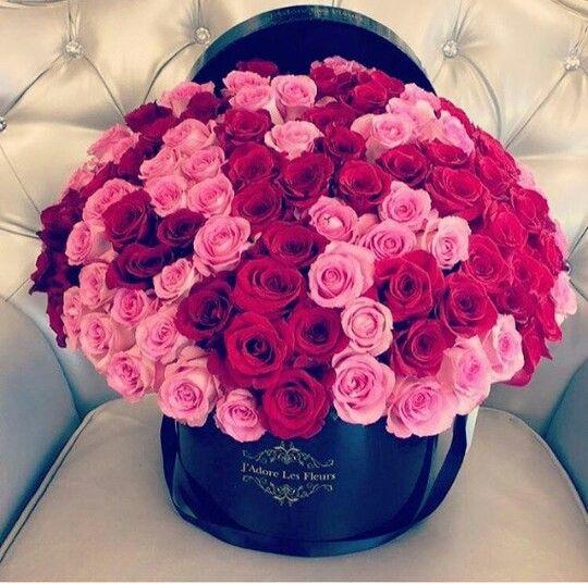 j'adore les fleurs | x | pinterest | flowers, garden stairs and