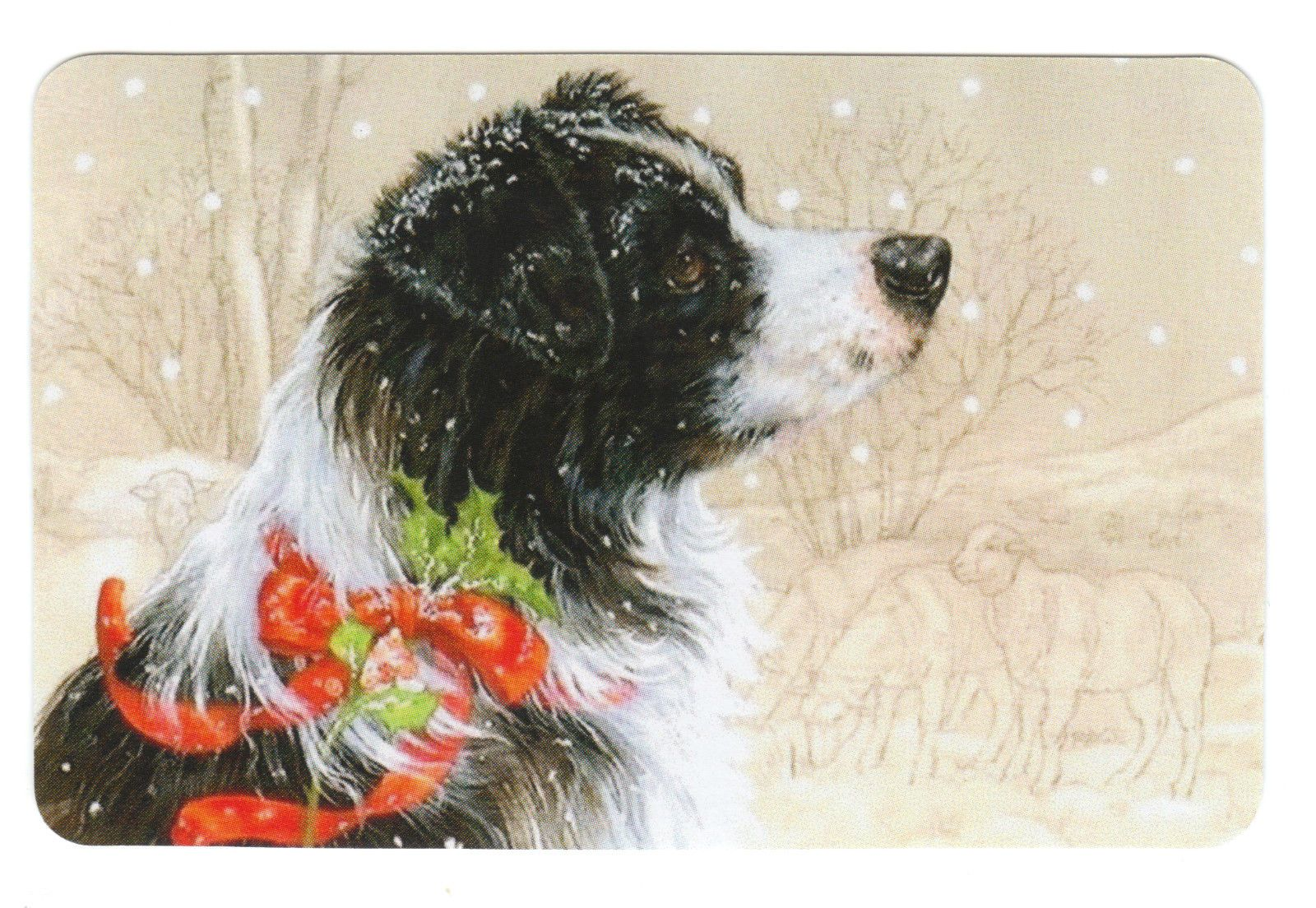 Playing Cards Swap Cards Australian Border Collie Sheep Dogs | eBay ...