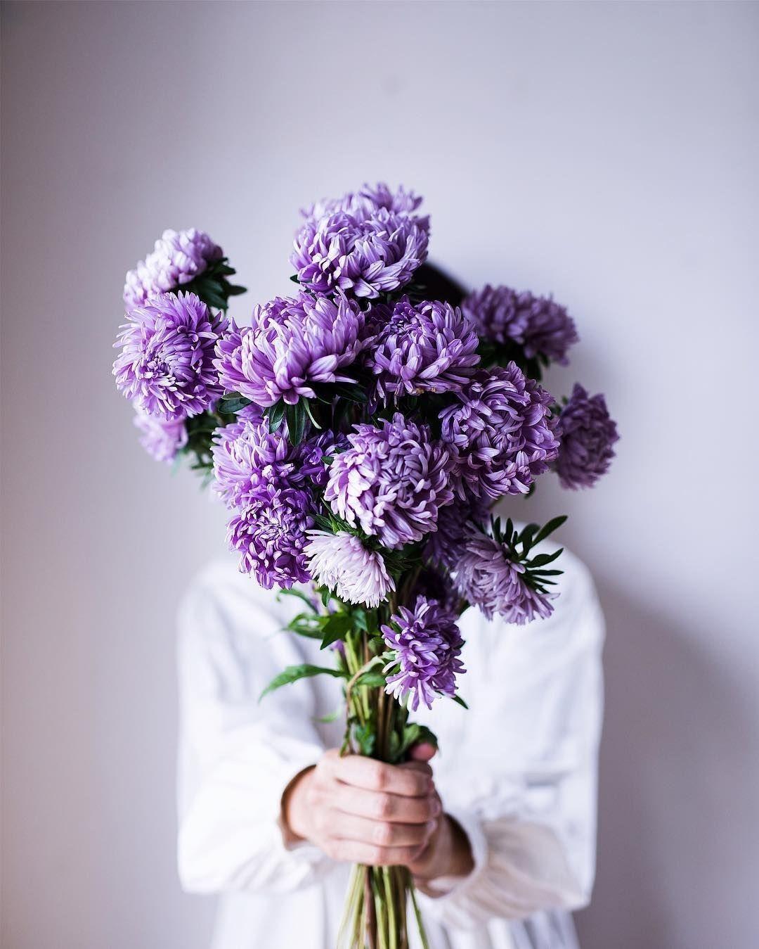 Pin By صورة و كلمة On لوني المفضل Purple Things In 2021 Flower Aesthetic Pretty Flowers Beautiful Flowers