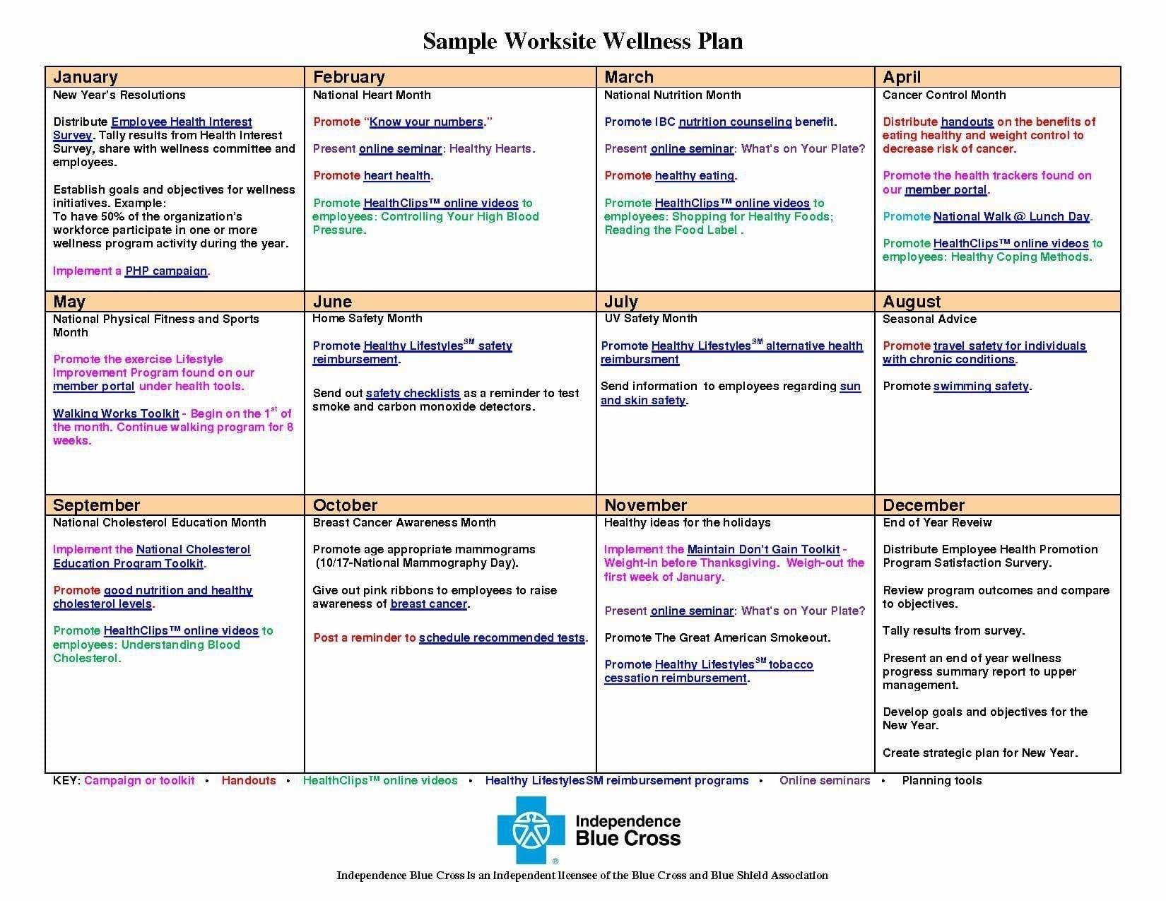 9 Wellness Recovery Action Plan Examples Blank