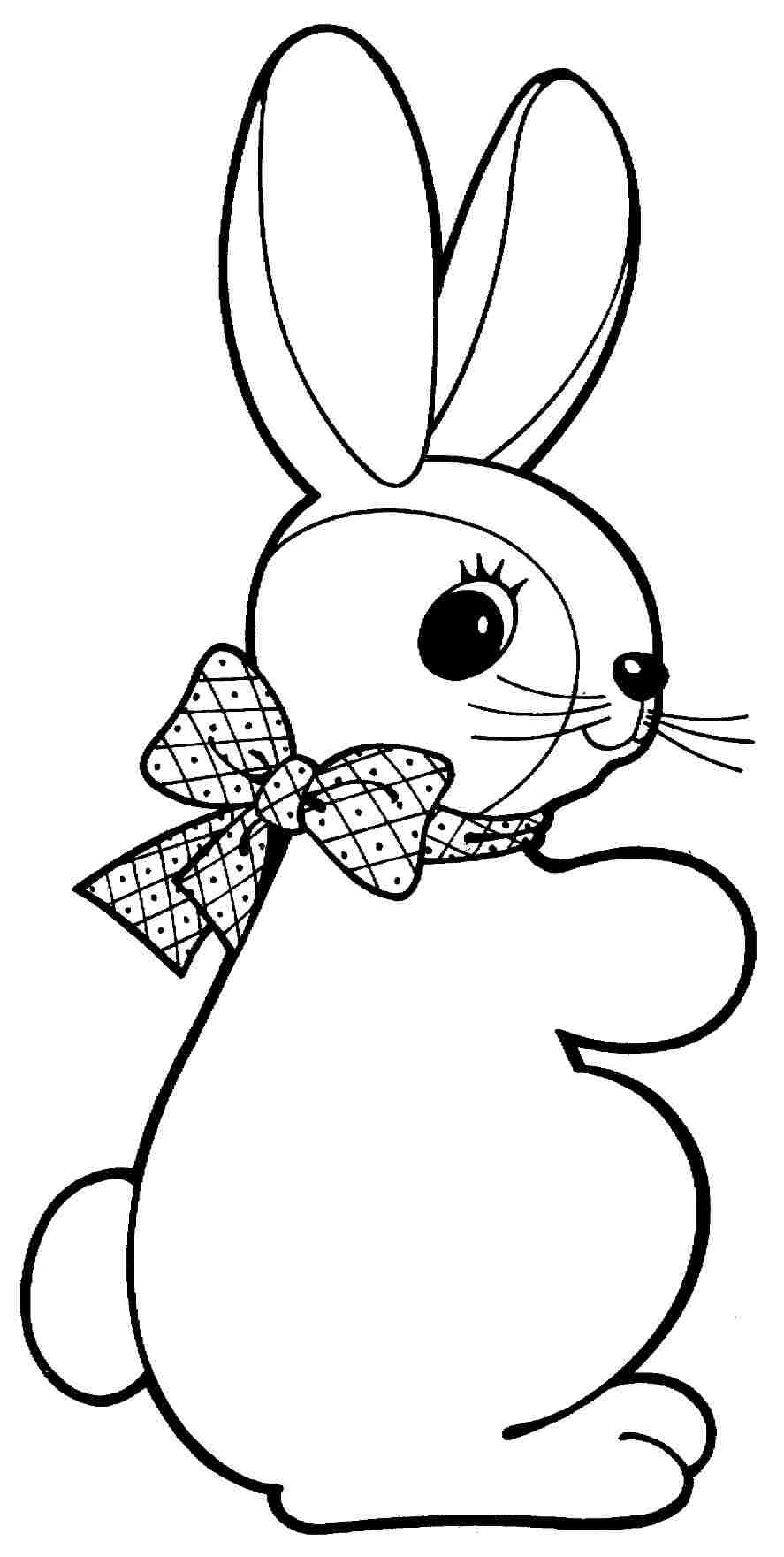Animal Rabbit Colouring Pages Free Printable For Preschool