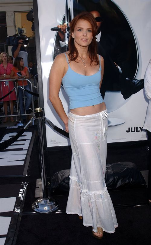 500x1000px-LL-457cb4c2_dina-meyer-6852.jpeg (500×807)   Dina meyer, Dina, Celebrities female