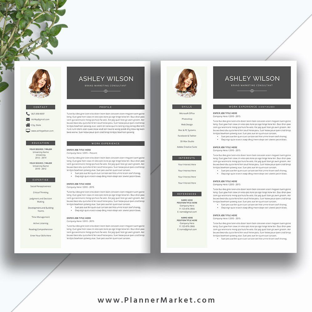 2 Page Resume Example Awesome This Beautiful and Modern Ms