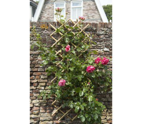 Shop Nature haveespalier 70x180 cm bambus 6040721 vidaXL