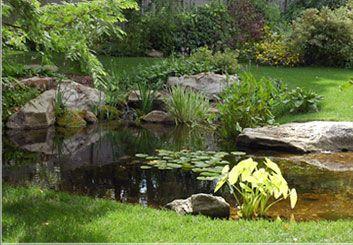 dc3b2e09fde61e6ed530a867f76a379c - Anthony Archer Wills Designing Water Gardens