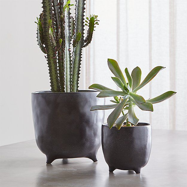 Vaquita Grey Footed Planters Crate And Barrel Planters 400 x 300