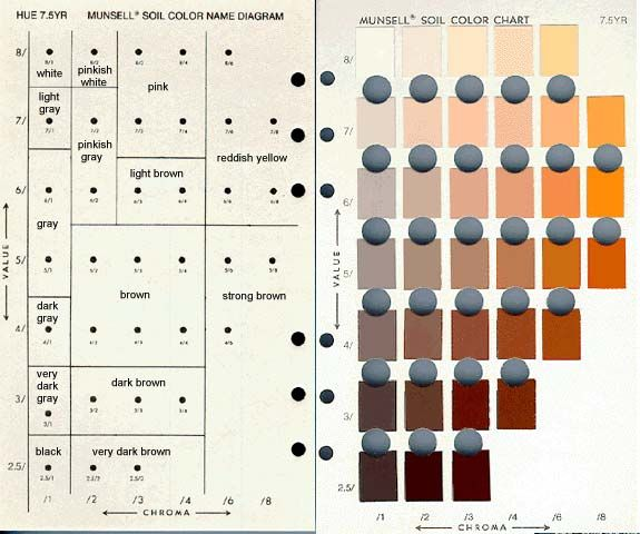 Soil colors munsell color chart online free color in 2019
