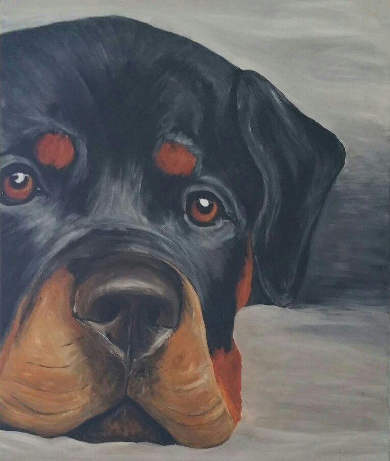 Rottweiler 50x70cm Acrylic On Canvas Dog Art Canvas Painting