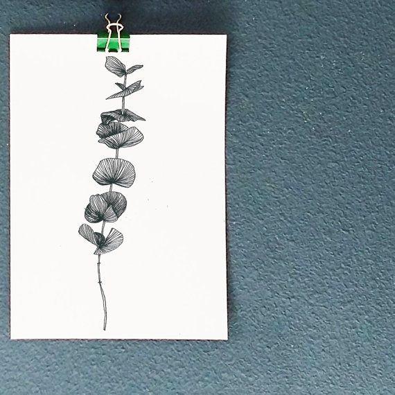 Dessin illustration r alis la main affiche a4 en - Branche d eucalyptus ...