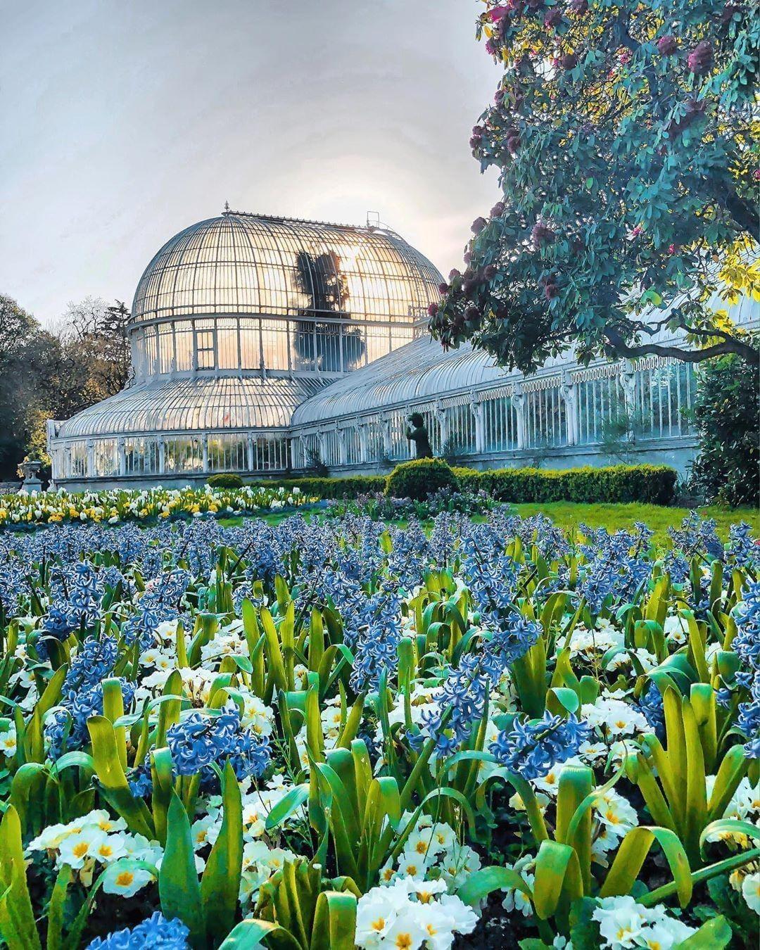 Gefallt 1 035 Mal 14 Kommentare Visit Belfast Visitbelfast Auf Instagram Belfast S Botanic Gardens Visit Belfast Instagram Botanical Gardens
