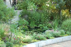Bon Dream Garden