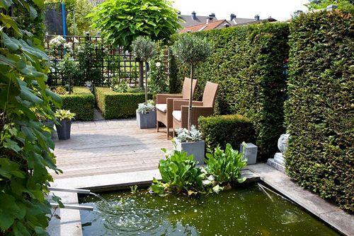 Small formal urban garden with raised pond. Patio beyond with Olea ...