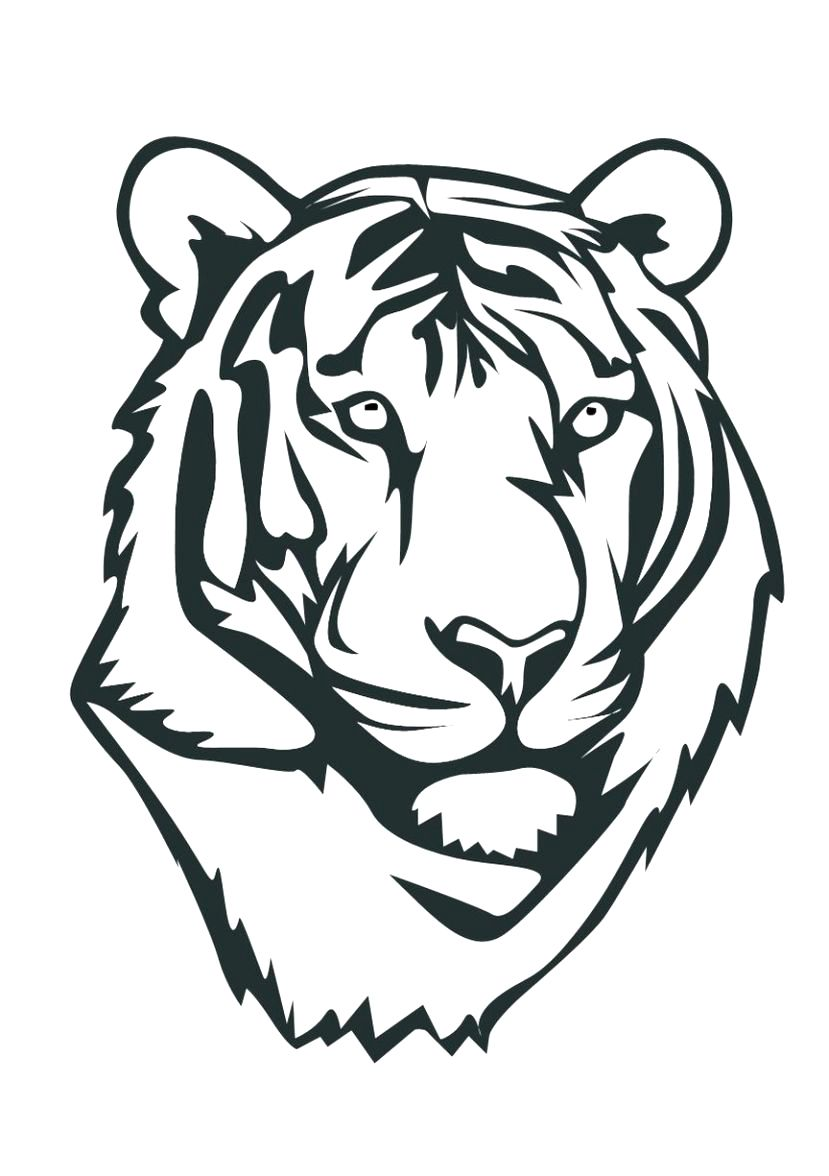 Baby Tiger Coloring Pages Coloring Pages Tiger Coloring