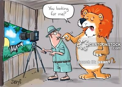 animals-wildlife_photographer-wildlife_photography-lions-predators-preys-ssan1_low.jpg (400×286)