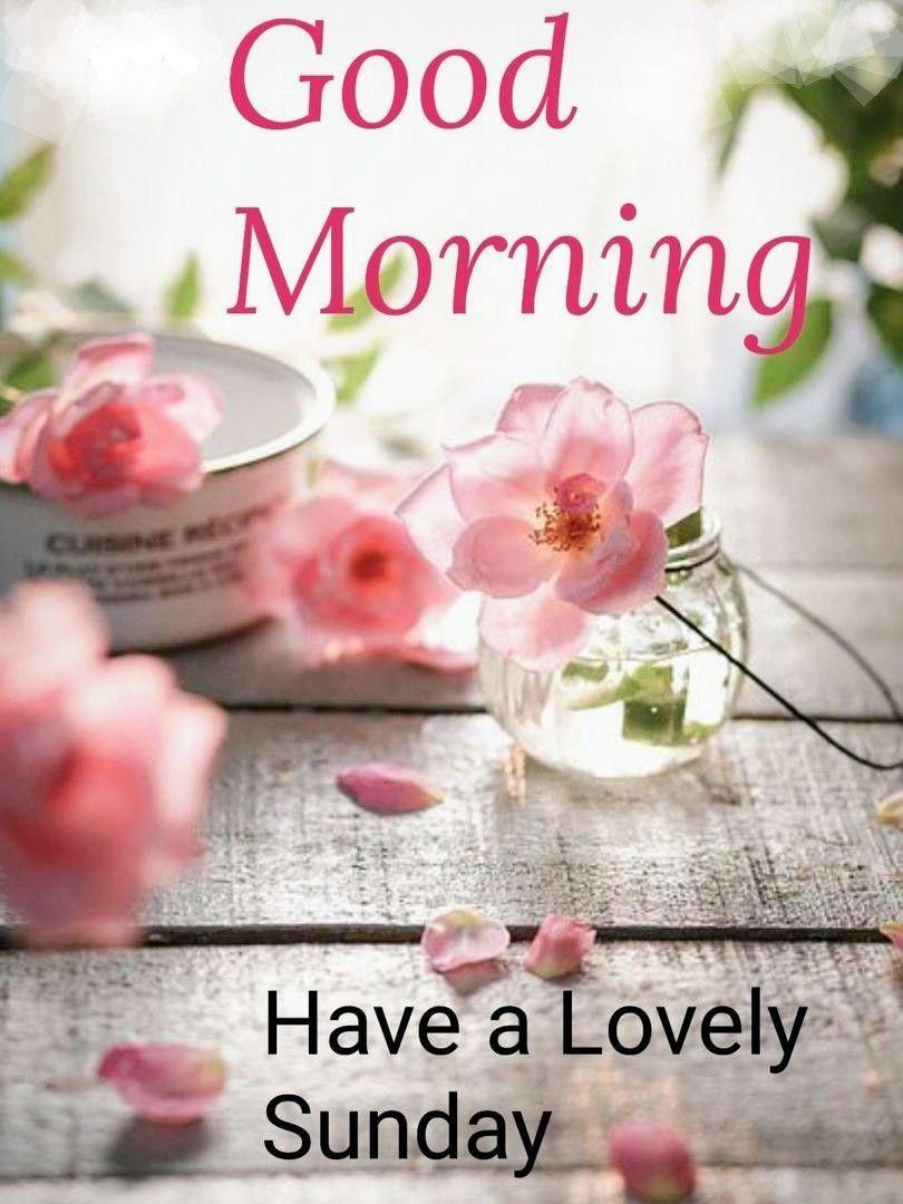 Pin by MK on Morning/ 早安/午安   Good morning happy sunday, Happy ...