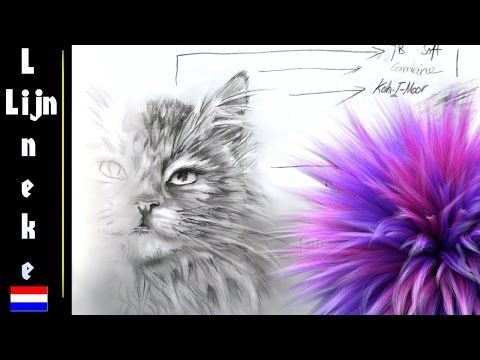 How to draw Fur / animal hair - YouTube