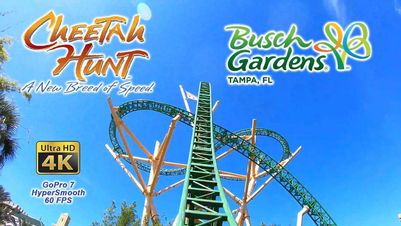 Busch Gardens Tampa Concert Series 2018
