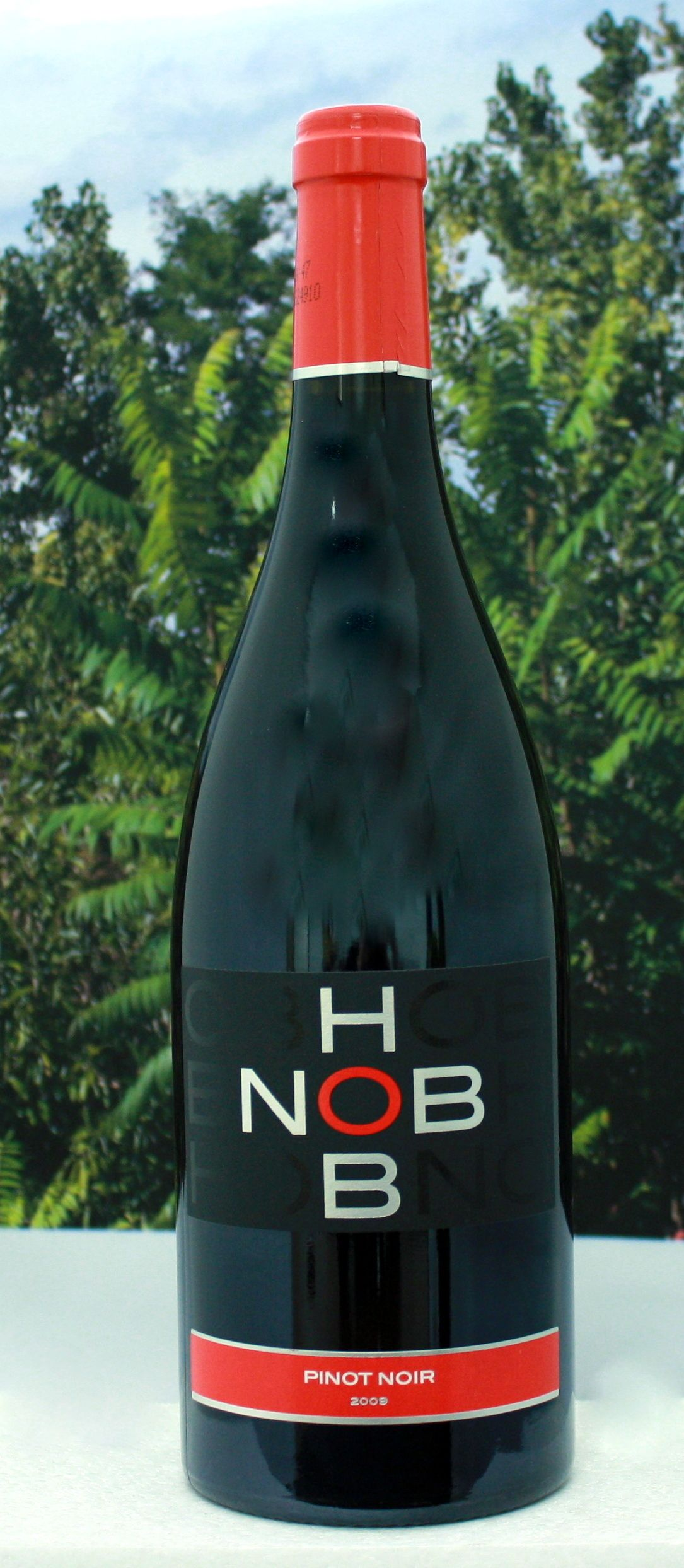French pinot noir refined and elegant pinot for any occasion