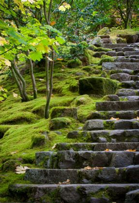 Stone Steps Lead Up A Moss Covered Heavily Landscaped Slope In The Portland Japanese  Garden, © Jonathan Cohen 2010 IStockphoto