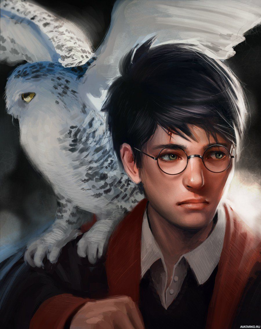 Картинка 900x1134 | Красивый арт с Гарри Поттером с совой ...