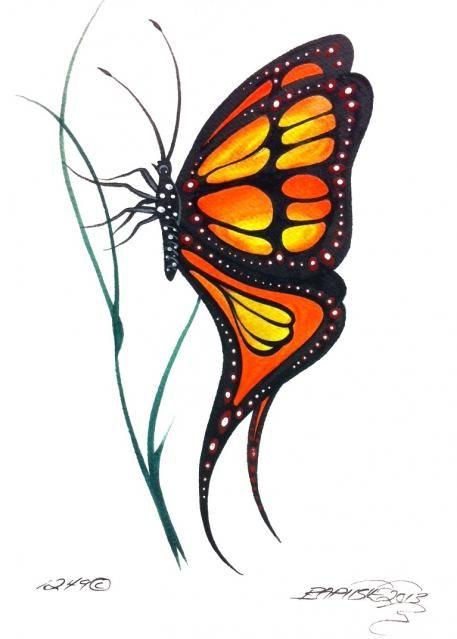 Ray Baptiste Butterfly