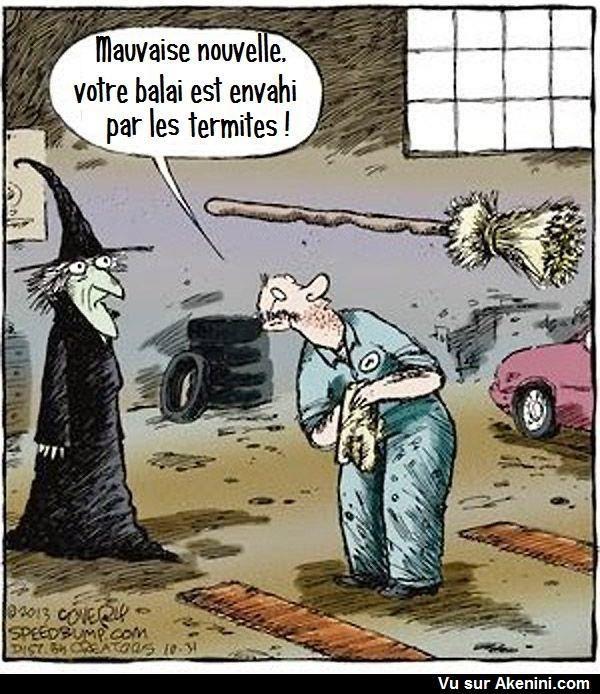 Akenini.com - Cartoons Halloween | image drole | Halloween ...