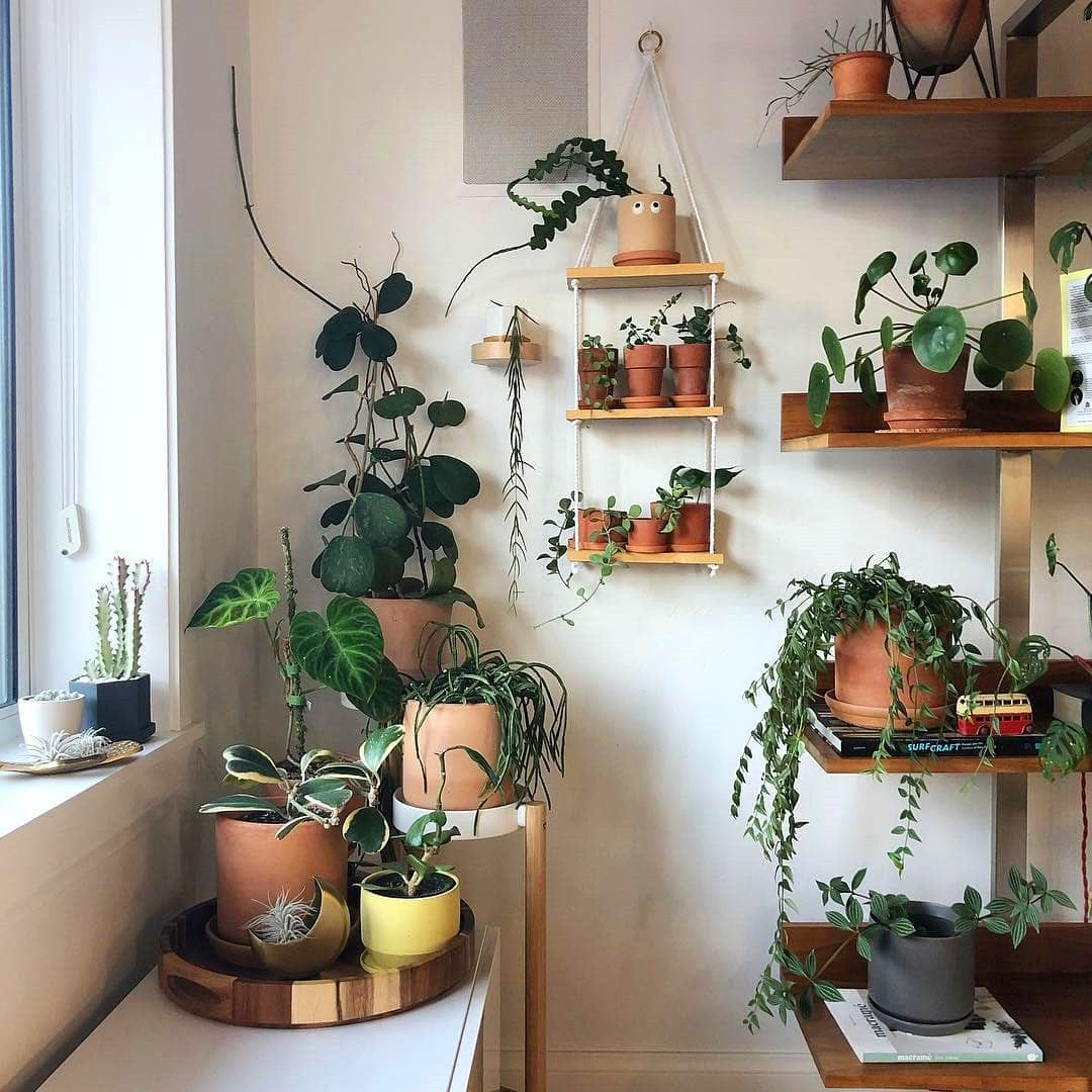 80 DIY Plant Stand Ideas To Fill Your Room With Greenery on Amazing Plant Stand Ideas  id=60723