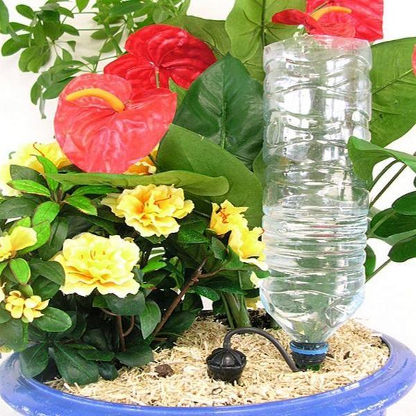 Druppelaar voor planten - druppelsysteem kopen
