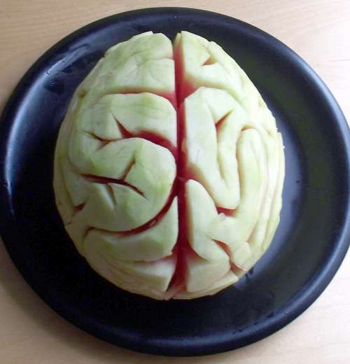 Melon Brain by Instructables (If you're into gruesome, plant a cleaver!)