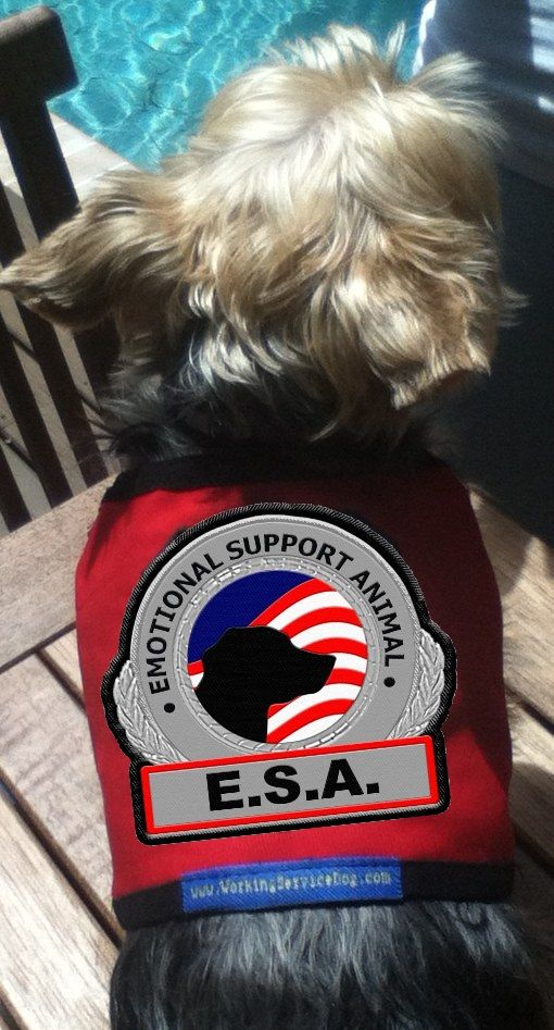 Premium Esa Vest For Smaller Emotional Support Animals Anxiety
